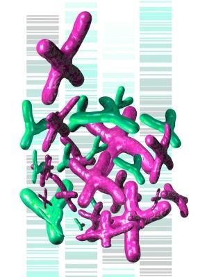 ID-DNA green purple