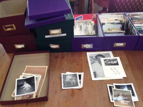 Bog Organize Photos 2