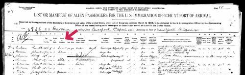 Sample-ship-passenger-list1