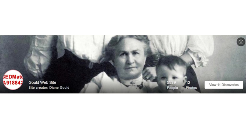 MyHeritage header for my Gould website