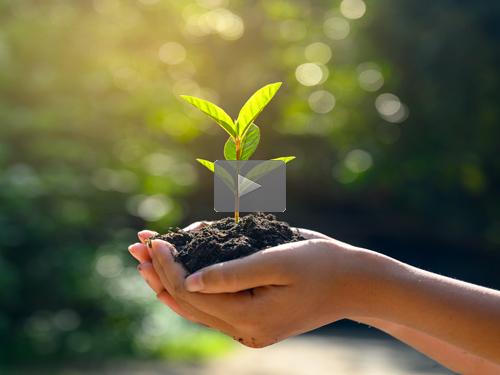2021-02-02-nurture-500blog
